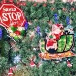 Santa STOP Here!! 2020